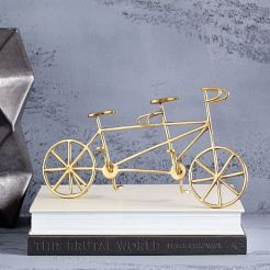 brass-bicycle-object-c